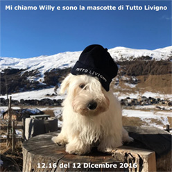 Willy Tutto Livigno