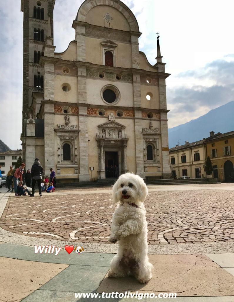 Willy ♥ a Tirano - Madonna di Tirano