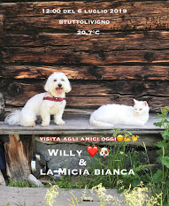 Willy ♥ and his friend Micia Bianca