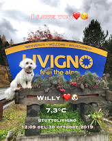 Willy ♥ say welcome