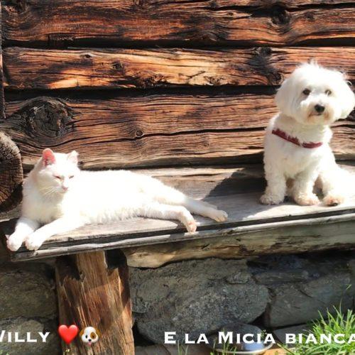 visit to her friend Micia Bianca