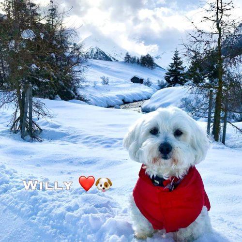 Willy ♥ near the Spöl river in Livigno