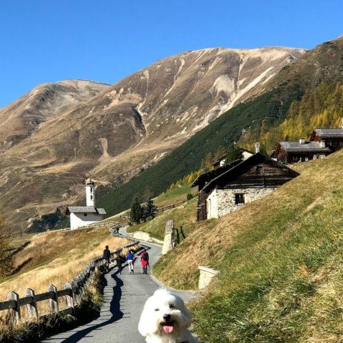 Willy ♥ in Val Federia Livigno - Federia Church - Leverone