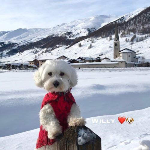 Willy ♥ posing near the parish church
