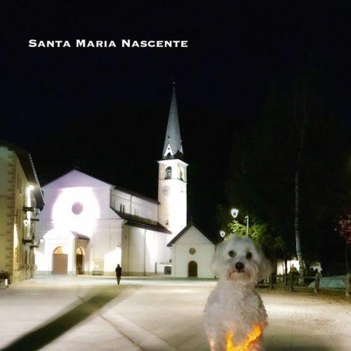 Willy ♥ and Santa Maria Church