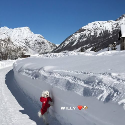 Willy ♥ either I am small or the snow is high