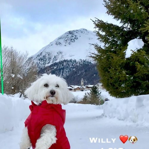 Willy ♥ as Superhero