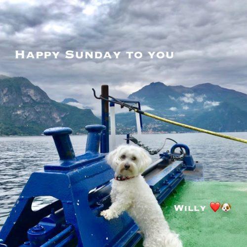 Willy ♥ Trip on Como Lake