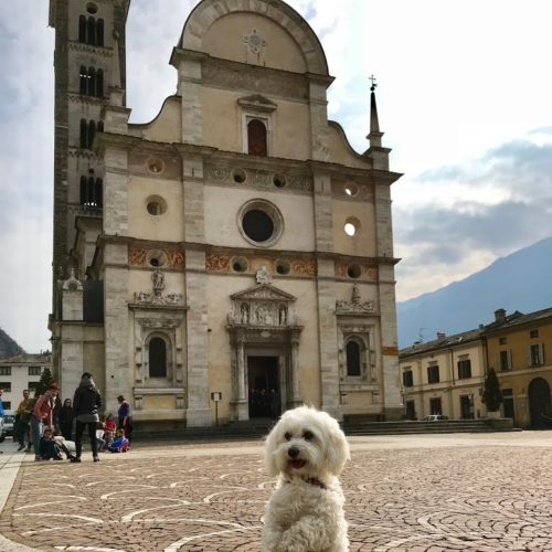 Willy ♥ in front of the Basilica of Tirano
