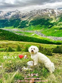 Willy ♥ view of Livigno