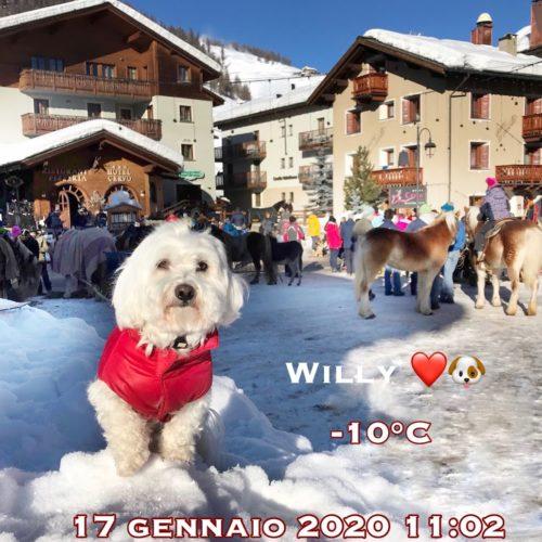 Willy ♥ Livigno 2020 01 17