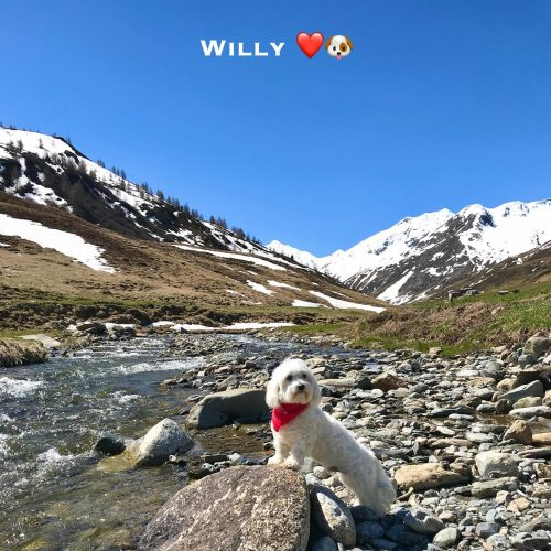 Willy 30-05-21